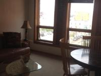 Beautiful furnished 1 bedroom apartment in downtown La