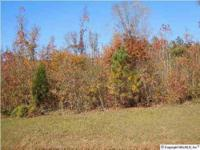 Commercial building lot (1.59 acre) near Super Walmart,