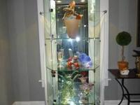 Title: Stunning contemporary lighted glass cabinet,