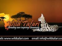 Visit us on the web at www.wildtafari.com for more