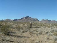 You get a 1/2 acre lot in Deming, New Mexico on SALE