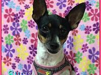 Susy's story Hi friends my name is Susy. Im a 3 year