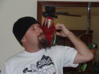(531) 600-1062 Best Macaw Ever.Very affectionate and