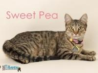 Sweet Pea's story World's best mother is looking for