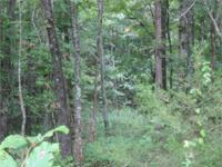 11.42 wooded acres (per assessor) in gorgeous