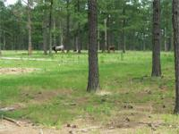 McDonald Branch Cattle Ranch is an operating diverse