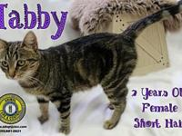 Tabby's story You can fill out an adoption application