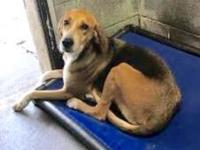 Taboo's story I am a laid back, easy going gal who will