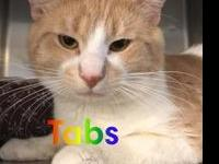 Tabs's story Hi my name is Tabs I am an adult male