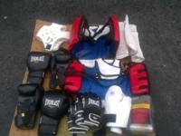 Taekwondo Sparring Gear & Gloves. $250 for everything