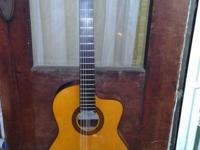 Takamine EG124C G Classical Cutaway, almost new
