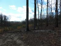 The Fannon tract was clear cut and replanted in 2013.