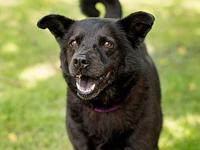 Tally's story Tally is a senior girl who has been at