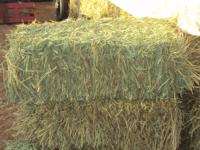 Have quality tamcale square bales, weighing 55-60