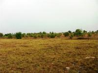 This 42 acre tract is located just 15 minutes from