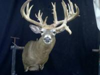 Tall Tine Taxidermy new location  12545 West A.