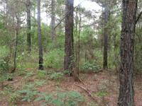 Bodcau Creek Land for Sale in Arkansas AR State Highway