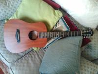 Taylor Baby Monotony Jr Acoustic Guitar WITH travel