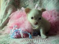 Little Lilly is a little dollbaby. She has bluegreen