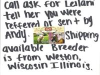 ( CALL OR TEXT LEILANI DIRECTLY TO HER CELL( TELL HER