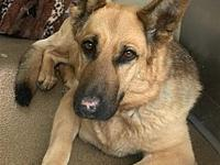 Tera's story I am a little shy and would prefer a home