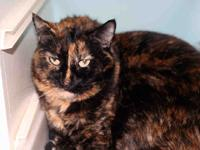 Tesa is a friendly, affectionate, and playful girl. She
