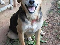 TESS's story RESCUED, from high-kill Laurens Co, SC