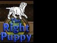 TheRightPuppy.com is a website resource for individuals