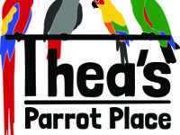 Thea's Parrot Place is a Provider, Nurturer and Social