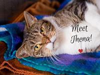 Thena's story Thena is a sweet girl with a lot of love