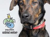 Thomas is about 3 years old.  YWAC Adoptions include: