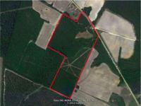 UNDER CONTRACT! 34 a/c Hunting Land for Sale in Halifax