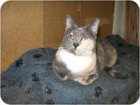 Tippy's story Tippy is a very loving little girl who is