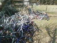 Lots of old bikes. A couple fixer uppers or parts you