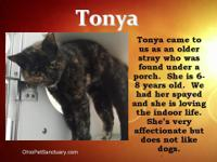 Tonya is a friendly girl was found and cared for for