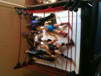 Wrestling ring with 5 wrestlers - $ 20.00 Big Buck