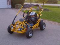 TrailMaster 200cc XRX Max Go Cart CALL SCOTT TODAY AT