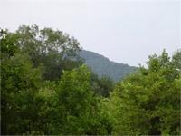 Great 16+ acre tract of land with 60 feet of Deeded