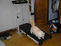 HI, TREADMILL CAT NOT INCLUDED, WORKS