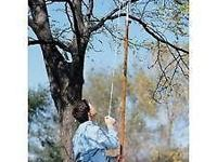 Do away with that ladder. Power-Lever 14-Foot Tree