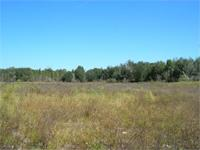 Lot 7 Oak Hill. 65.89 Acres. Pasture and Rolling