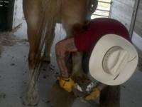 Rs Ranch  4 or more Horses $25.00 Singles $30.00 //