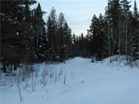 Upper Michigan 80+ Acre Wooded Recreational Parcel For
