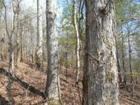 HIGHLIGHTS:. !!! NEW PRICE - $1895 PER ACRE !!! 297