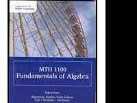Math1100 : Fundamentals of Algebra - With 2 CD's