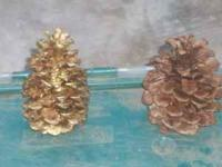 I am selling a tub full of large pine cones. I am