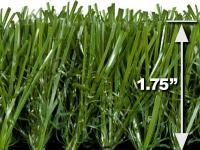 Turf Evolutions TruGrass Natural provides an