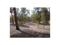 NICE TREED LOT WITH EASY Building sites and access from