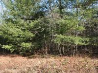 Two 1 acre gentle slopping lots with lake access next