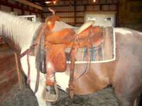15in Textan Circle- Y-Yoakum Hereford Brand Western